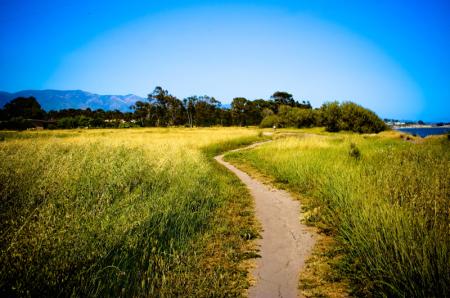 Malia's path